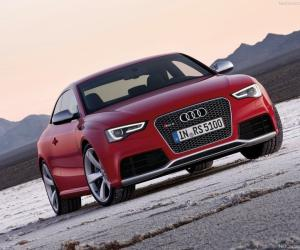 Picture of Audi RS5 (8T3 facelift)