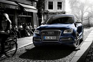 Picture of Audi SQ5 TDI (8R)