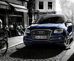 Picture of Audi SQ5 TDI (8R)