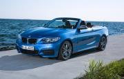 Image of BMW M235i Convertible