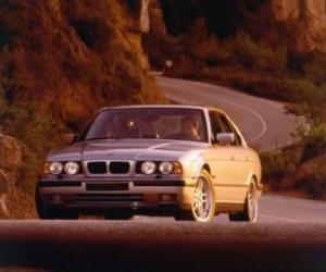 Picture of BMW M5 (E34)