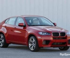 Picture of BMW X6 M