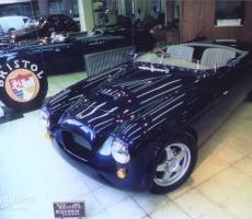 Picture of Blenheim Speedster