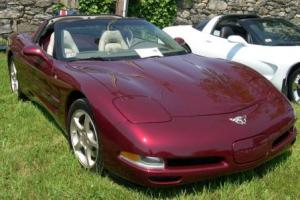 Picture of Corvette C5 Comm. Edition Targa