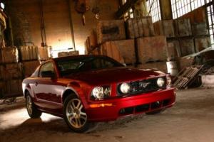 Picture of Ford Mustang GT (Mk V)
