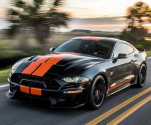 Picture of Ford Mustang Shelby GT-S