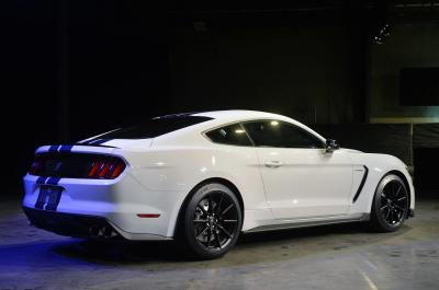 Image of Ford Shelby Mustang GT350