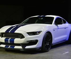 Picture of Ford Shelby Mustang GT350
