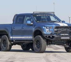 Picture of Velociraptor 6x6