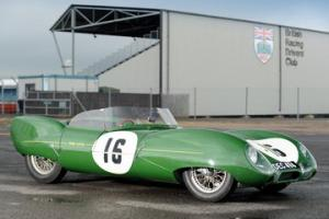 Picture of Lotus Eleven