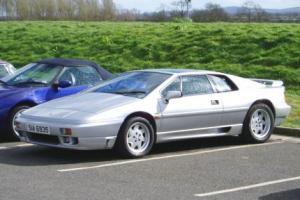 Picture of Lotus Esprit Turbo SE