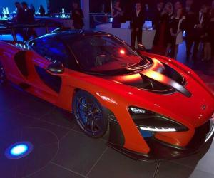 Picture of McLaren Senna (P15)