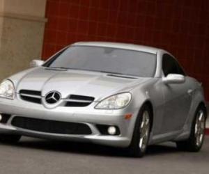 Picture of Mercedes-Benz SLK 350 (R171)