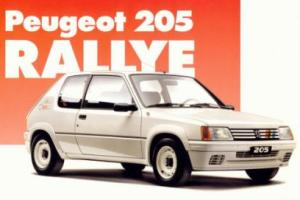 Picture of Peugeot 205 Rallye