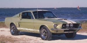 Photo of Shelby GT500