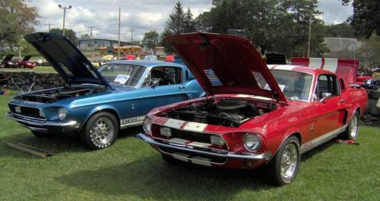 Image of Shelby GT500 427
