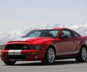 Picture of Shelby Mustang Cobra GT500KR