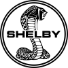 Shelby power/weight