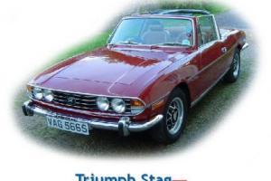 Picture of Triumph Stag