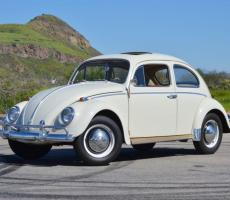 Picture of Beetle 1200
